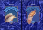 Australian Marine Shells  2 volume set